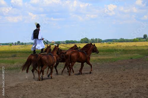 Poster Paardrijden horse riding