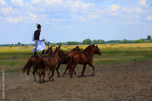 horse riding - 69540721