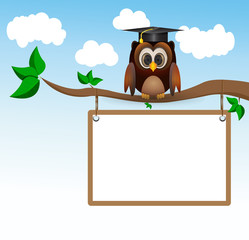 Owl sitting on three with whiteboard