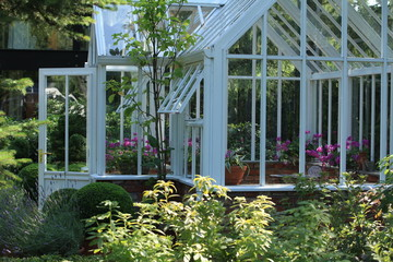 green house full of flowers and plants