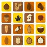 Fototapety Nuts Icons Set
