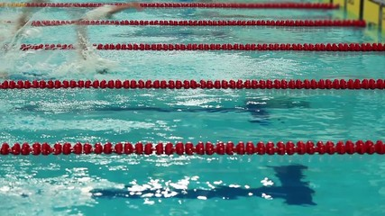 Swimming competition start and finish
