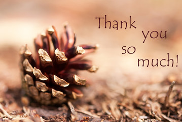 Fir Cone with Thank You so Much
