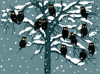 owls in the winter day