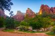Leinwanddruck Bild - Canyon Zion