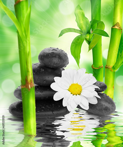 spa Background -  black stones and bamboo on water - 69551959