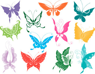 twelve butterflies