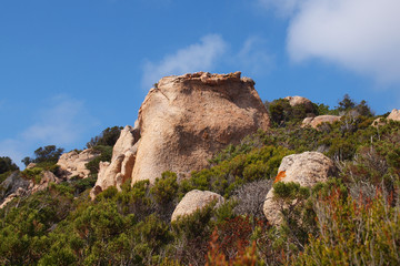 Korsika - Felsformation am Capu di Muru