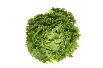 Salate, close up