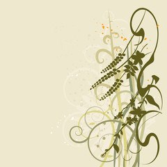 Floral background, blooming flowers