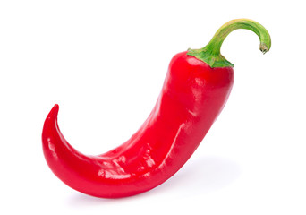 Red chili pepper isolated