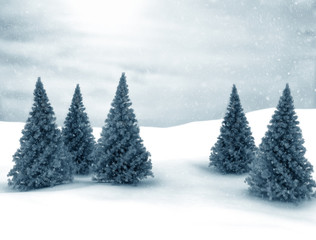 Winter scene Christmas Trees