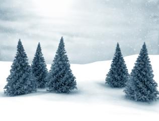Winter scene Christmas Trees