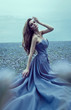 Beautiful young bride wearing blue dress