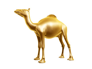 golden camel