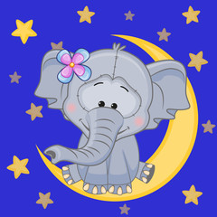 Cute Elephant on the moon