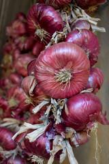 Cipolle rosse del contadino
