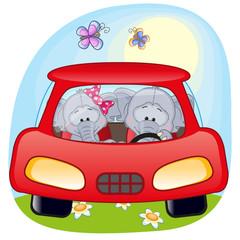 Two Elephants in a car