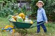 Boy with wheelbarrow in garden