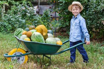 Boy with wheelbarrow in garden