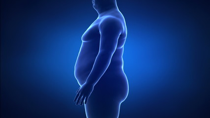 Obesity and healthy life style concept lateral view