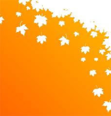 Karte Herbst Blätter