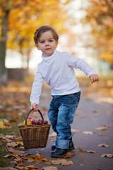 Cute little boy with basket of fruits in the park
