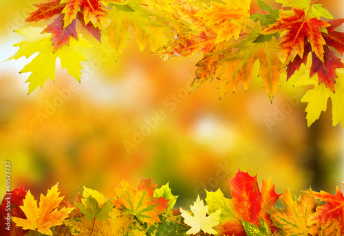 canvas print picture autumn background 1