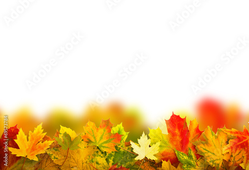 canvas print picture Herbst copy space