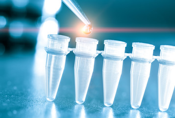 Microbiological test tubes and pipette