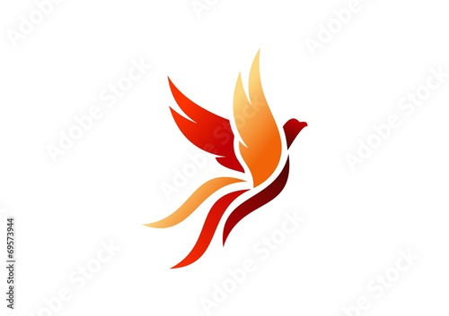 bird,logo,phoenix,flying,hawk,eagle,wings,icon,symbol - 69573944