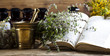 Leinwanddruck Bild - Herbal medicine and book