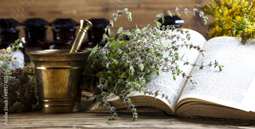 Herbal medicine and book - 69574115