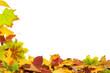 Herbst 70