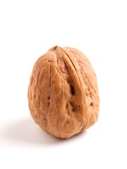 Walnut isolated on white