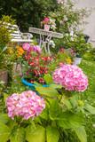 Home garden in blossom