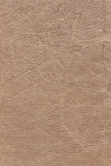 Old Brown Leather Creased Crumpled Grunge Texture