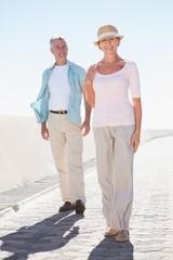 Happy senior couple walking on the pier