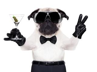 cool dog peace