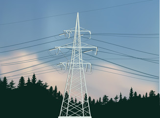 electric power pylon in green forest