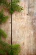 canvas print picture - Holzhintergrund mit Reisig