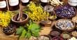 Leinwanddruck Bild - Medicine bottles and herbs
