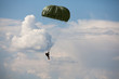 Parachutist in the war - 69585574