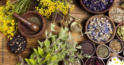 Leinwanddruck Bild Natural medicine, herbs, mortar