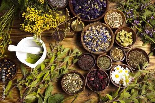 Natural medicine, herbs, mortar - 69586528