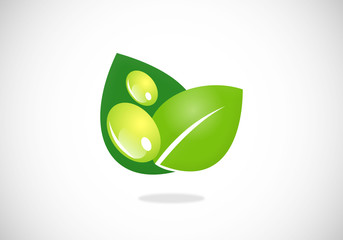 green leaf ecology water drop natural vector logo