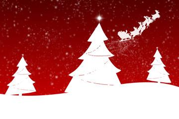Weihnachtsbäume im Schnee ©yvonneweis