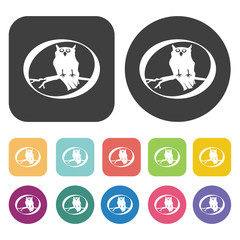Owl icons set. Round and rectangle colourful 12 buttons. Vector