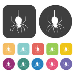Spider icons set. Round and rectangle colourful 12 buttons. Vect