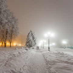 winter city park iat night. Kiev, Ukraine